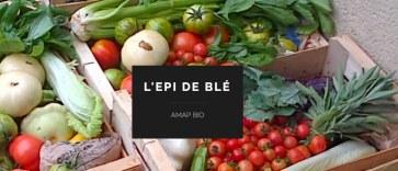 AMAP_L_Epi_de_ble