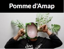AMAP_Pomme_d_AMAP