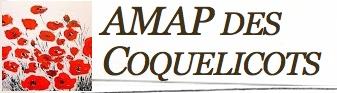 AMAP_des_Coquelicots_31