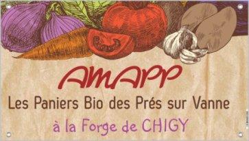 AMAPP_Chigy