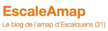 EscaleAMAP_31