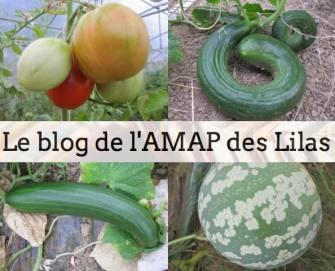 AMAP_desLilas-31
