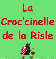 AMAP_Croc-cinelle