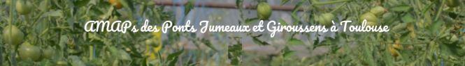 AMAP_Ponts_Jumeaux