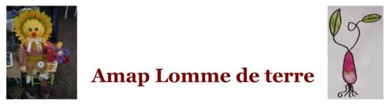 AMAP_Lomme_de_terre_59