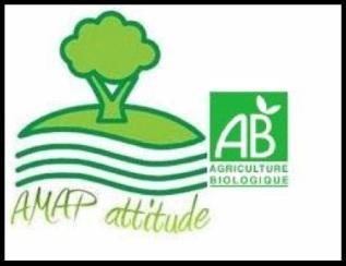 AMAP_Attitude