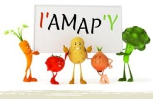 AMAP_Y
