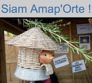 Siam_AMAPorte
