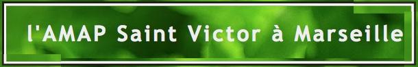 amap_saint-victor