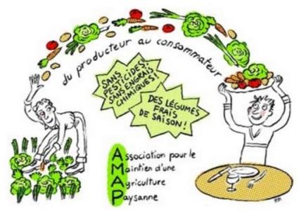 AMAP_dessin_debuts