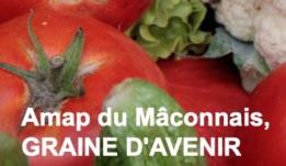 AMAP_du_Maconnais_GrainedAvenir