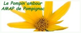 AMAP_PompinAmbour