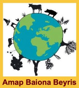 AMAP_Baiona_Beyris