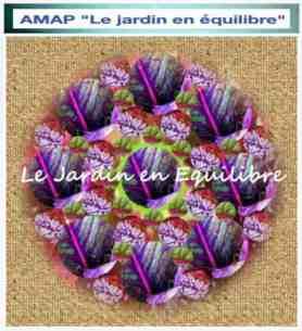 AMAP_LeJardinenEquilibre