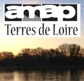AMAP_Terres_de_Loire