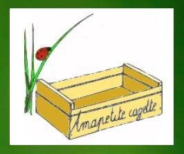 AMAPetite_cagette