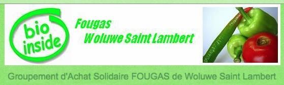 GASAP_FOUGAS_WoluweSaintLambert