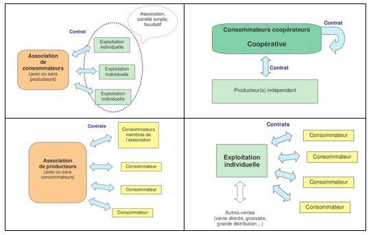 Schemas_exemples_d_organisations_ACP