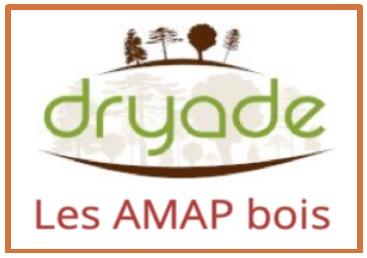 Dryade_AMAP_bois